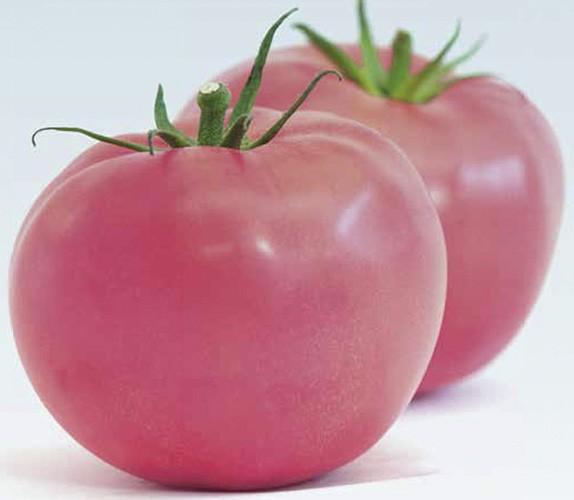 Помидор розовый фото