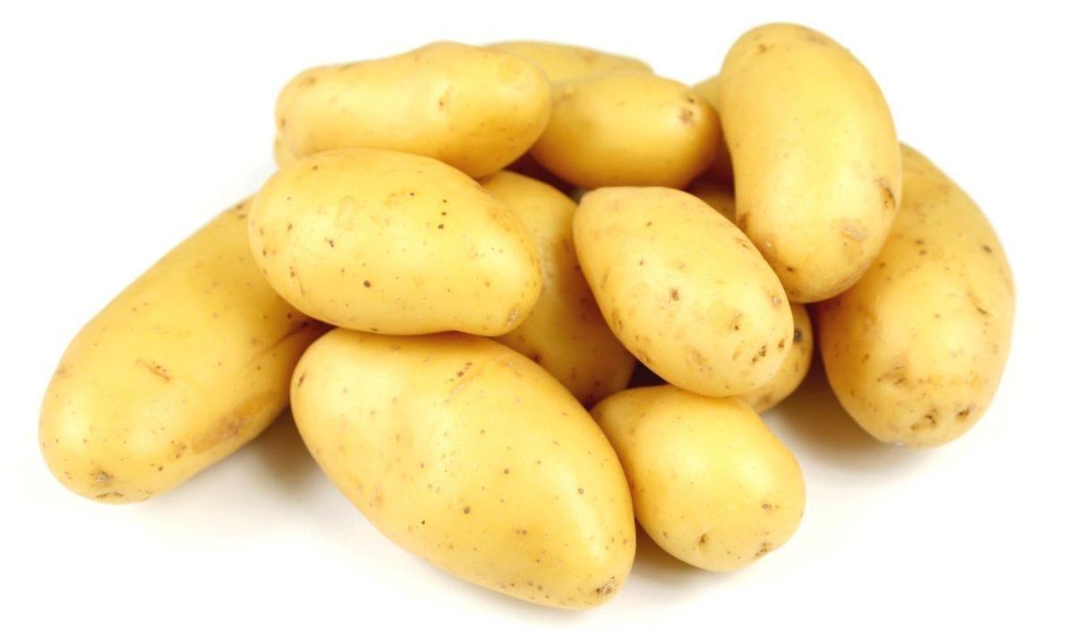 Картофель молодой фото