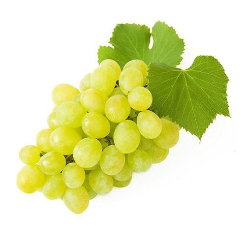Виноград белый фото